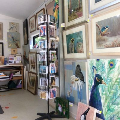 cards and artworks at wrendale wildlife artists studio healesville